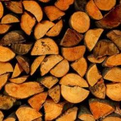 Conférence Vienne Condrieu « Plein feu sur le chauffage au bois » à Jardin